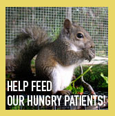 Help feed our hungry patients!